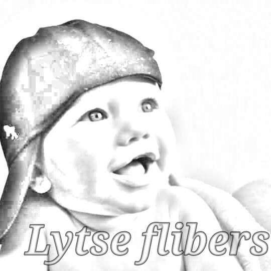 Lytse flibers